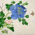 お花の日本画と鳥の想定画(デッサン絵画木曜クラス)